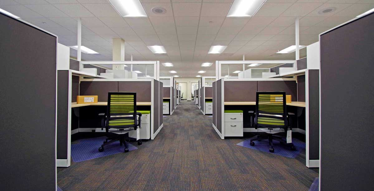 Tuality MIS Office Cubicles
